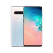 Samsung Galaxy S10 8/128Gb (SM-G973F/DS)